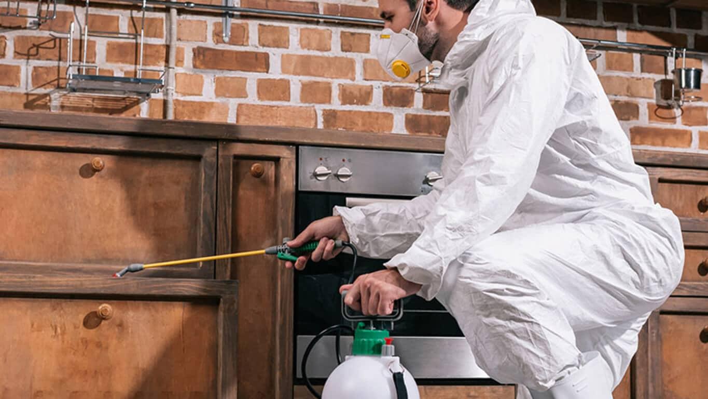 Pesticon termite control toronto