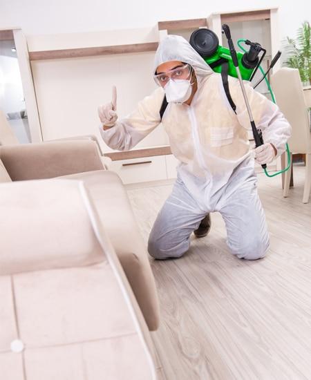 pest exterminator kitchener