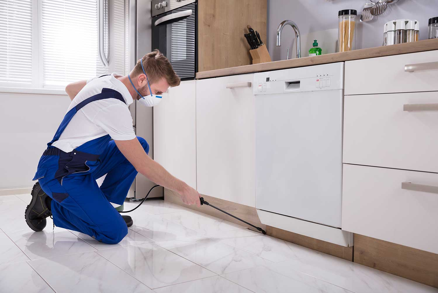 Pest Control Technicians in Guelph