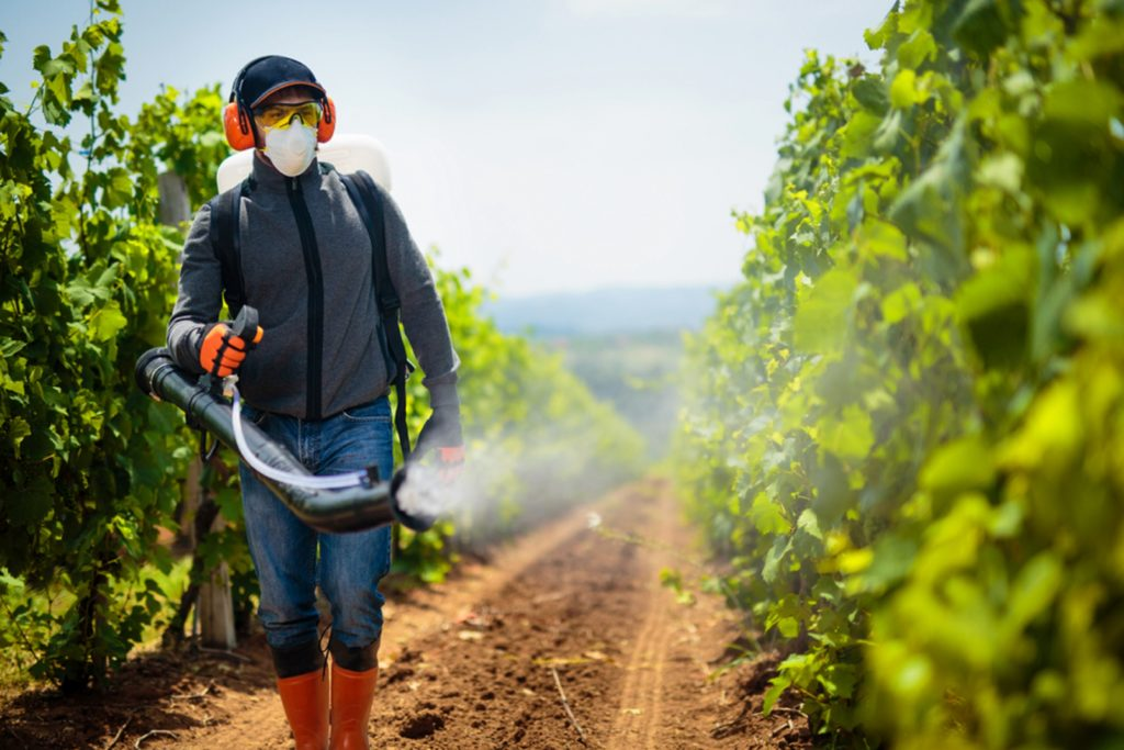 What are the Most Common Ingredients in Pesticides?